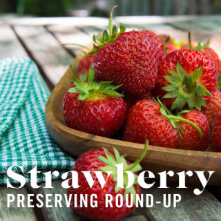 Strawberry Preserving Round-up