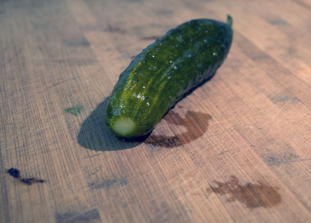 How to ferment pickles