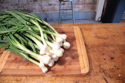 Dehydrating Green Onions 2